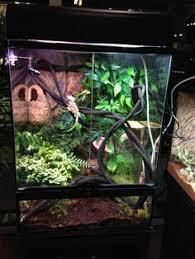 exo terra pt3115 terrarium substrat bio drain für