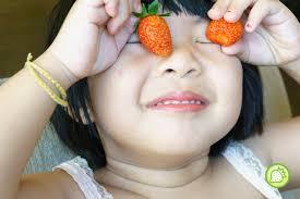 bureau vall馥 alen輟n strawberry gal adventures of september 2015