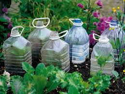 Tips For Planting A Vegetable Garden by Cloches And Cold Frames Diy