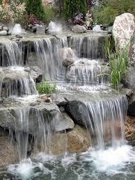 1227 best and bev images on garden ponds water