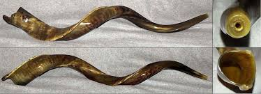 shofar mouthpiece yemenite kudu horn shofar 47 7c trumpet players horn gray usa