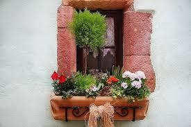 The Geranium On The Windowsill Just Died 37 Fabulous Garden Box Ideas
