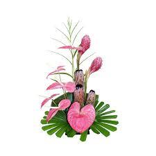 tropical flower arrangements protea hawaiian flower hawaiian flowers tropical flowers