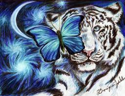 white tiger and butterfly by syberdeath on deviantart