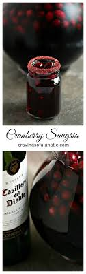 best 25 winter sangria ideas on sangria