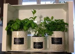 plante aromatique cuisine ma maison au naturel cultivez des plantes aromatiques dans votre