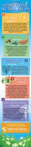 best 25 best detox diet ideas on pinterest diet food plans