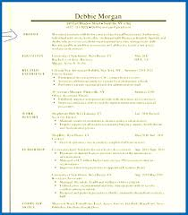 resume summary exles resume skills summary resume summary exles images embersky me