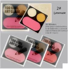 Makeup Schools In Ma Palette Color Picture More Detailed Picture About Too Cool For