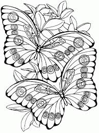 kids fun 56 coloring pages butterflies