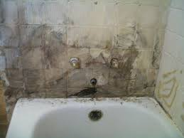 How To Prevent Black Mold In Bathroom Killing Mold In Bathroom How To Get Rid Of Black Mold In Your