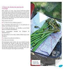 cuisine plantes sauvages cuisiner les plantes sauvages livres publications culture