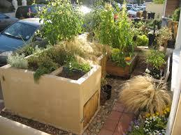 Urban Veggie Garden - designing an urban vegetable garden video and photos