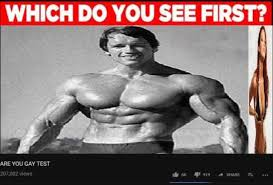 Gay Gay Gay Meme - dopl3r com memes which do you see first are you gay test