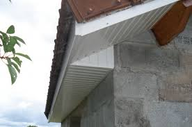 lambris pvc plafond cuisine lambris pvc exterieur sous toiture poser lames pvc lambris