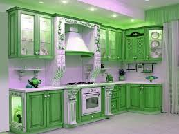 Remodeled Kitchen Cabinets Amazing Renovated Kitchens With Green Cabinets My Home Design