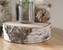 Wood Slices 20 4 4 1 2 Wood Slices