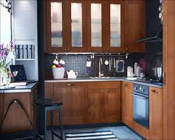 Replacing Kitchen Cabinet Doors With Ikea by Kitchen Mobile Home Kitchen Cabinets New Kitchen Cabinets Ikea