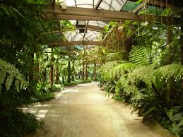 garden chronicles orchid garden in kuala lumpur