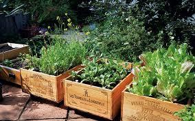 Summer Garden Ideas - ideas to transform your garden in time for summer telegraph