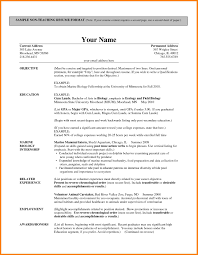 sle biography template for students 7 teaching resume format phoenix officeaz