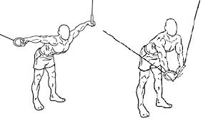 Flat Bench Dumbell Muscle Building Program I Markymarks Fitness