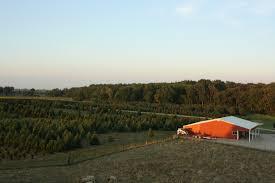 indian creek christmas tree farm home