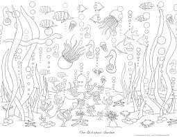 sea life coloring pages chuckbutt com