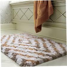 Rugs For Bathrooms by Fresh Runner Rug For Bathroom 20962