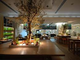 Italian Interior Design Luxury Nature Italian Fine Dining Restauran Interior Design Rucola