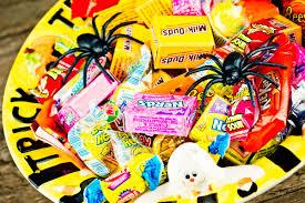 halloween dog safety tips reader u0027s digest