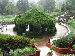 Types Of Botanical Gardens by Ooty Botanical Gardens Ooty Reviews Ooty Botanical Gardens