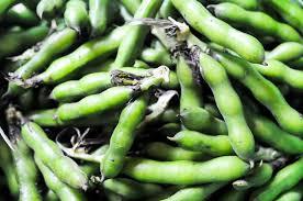 cuisiner des f钁es fraiches fèves fraîches sans trop s embêter recette chocolate zucchini