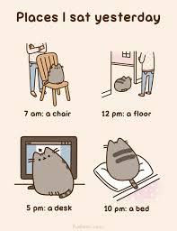 Pusheen The Cat Meme - 233 best pusheen the cat images on pinterest pusheen cat cute