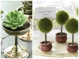 potted plant wedding reception flowers mywedding