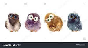 watercolor funny sketch owl art illustrations stock illustration