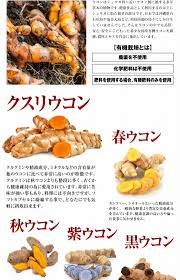 100 pics solution cuisine rurian rakuten global market 100 source of