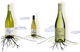 cartoon white wine listening u0027 to sancerre tell its story the new york times