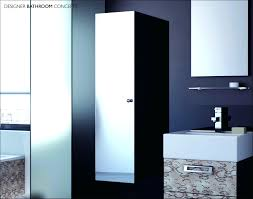 Mirrored Cabinets Bathroom Recessed Bathroom Mirror Cabinet Nz Bathrooms Smart Medicine