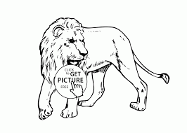 coloring lion real coloring page animals pages for kids
