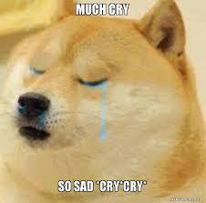 Cry Meme - much cry so sad cry cry sad doge ðÿ ðÿ ðÿ ðÿ ðÿ ðÿ make