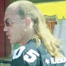 43 best mullets images on pinterest mullets hairstyles and bad hair