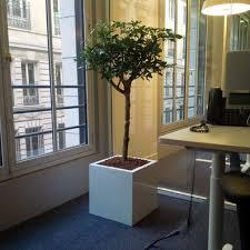deco bureau entreprise paysagiste d intérieur décoration bureaux entreprise open