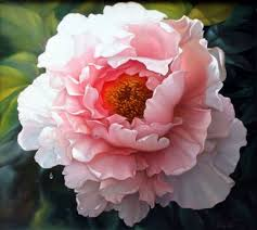 peonies flowers best 25 peony flower ideas on peony peonies and