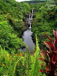 World Botanical Gardens Umauma Falls From The Overlook In The World Botanical Gardens