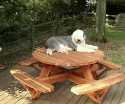 Round Redwood Picnic Table by Build Picnic Table Bench Quick Woodworking Idea How To Build Round