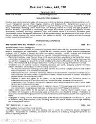 Good Resume Builder Website by S Resume Com S S Sample Resume Graphic Technical S Resume Sle