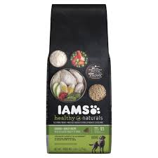 australian shepherd dog food best dog food brands for your canine friend