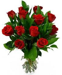 valentines roses dozen roses 12 valentines roses valentines