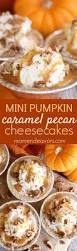 easy thanksgiving recipes desserts 17 best images about looks yummy on pinterest carrot cakes